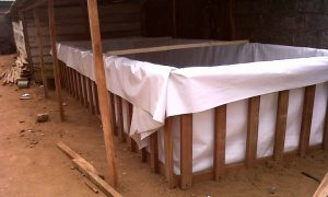 A good design of fish pond using reinforced tarpaulin and wood framework