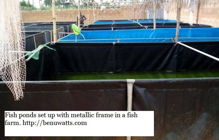 Reinforced Tarpaulin fish farm set up with galvanized pipes