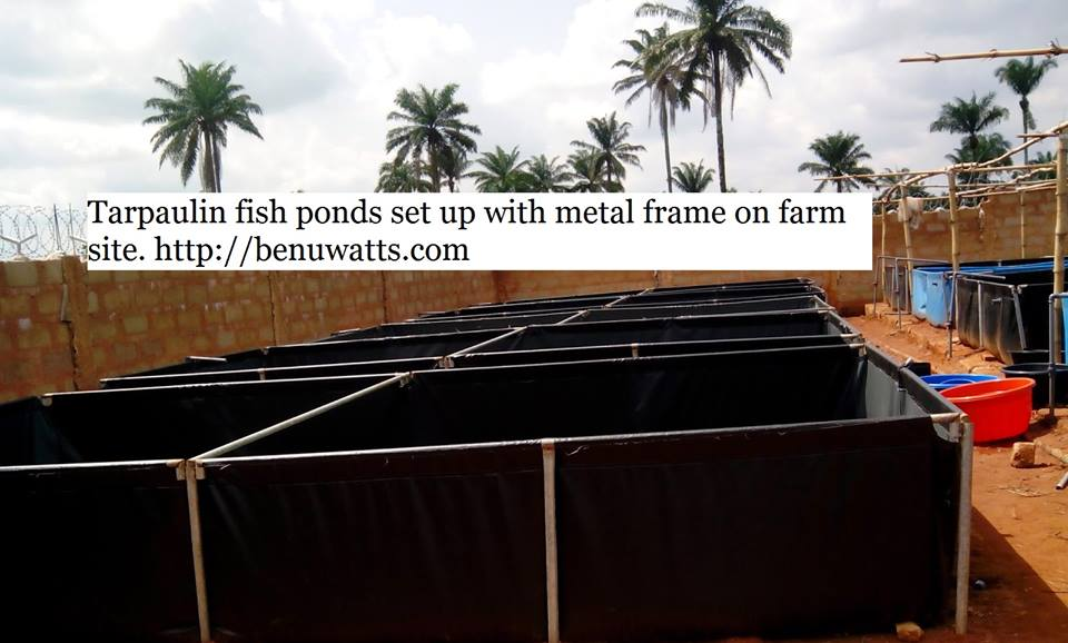 Modern fish farm set up using reinforced tarpaulin and galvanized pipe