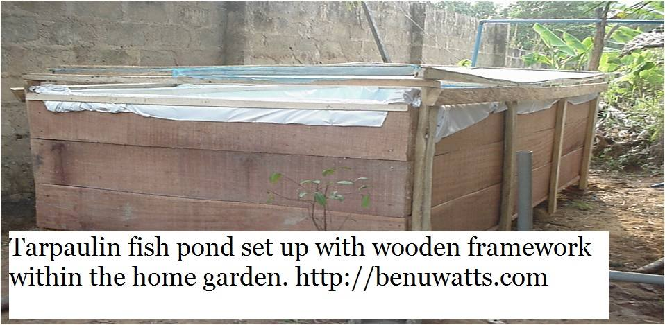 Affordable fish pond made of Reinforced Tarpaulin and wood